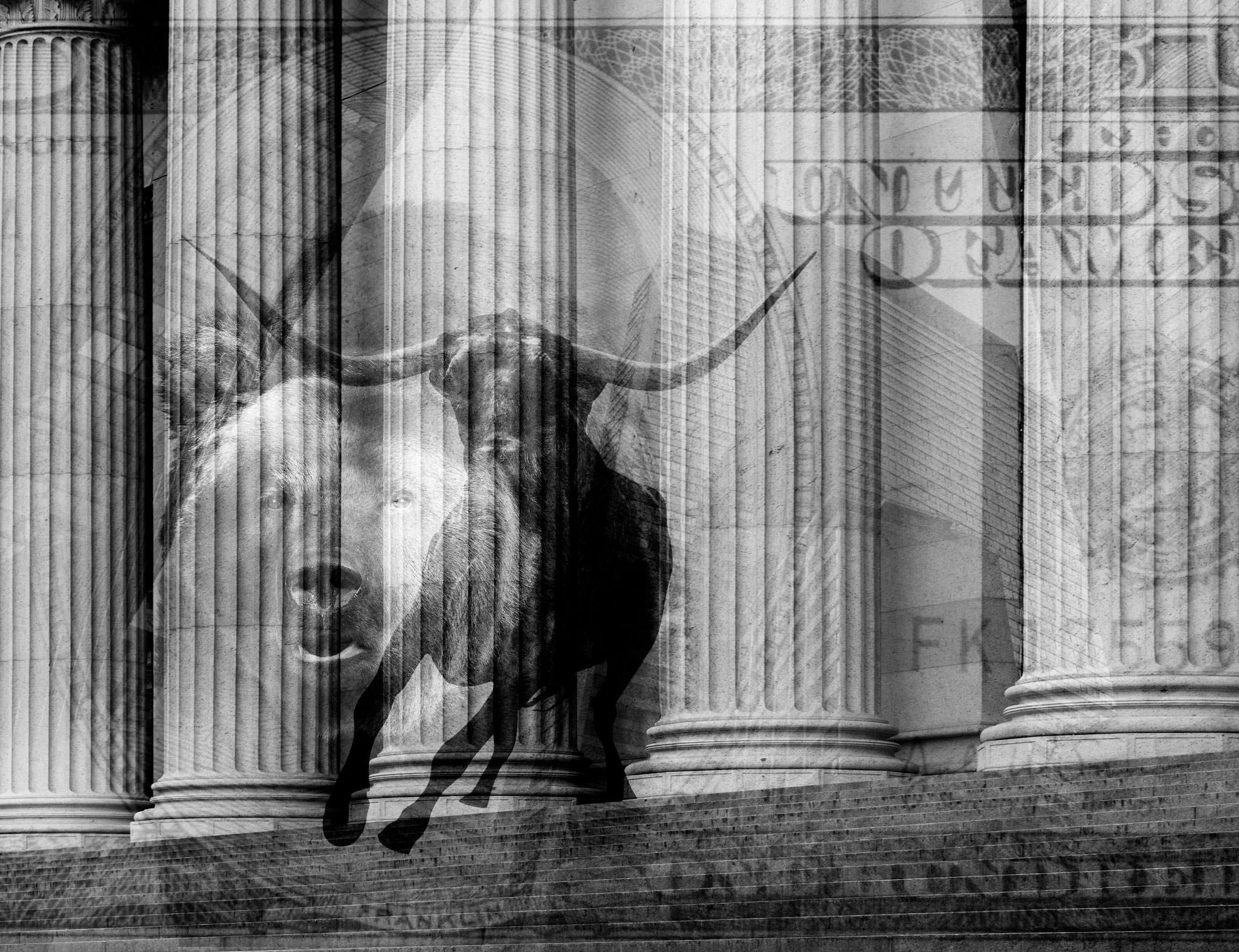 Investor relations webinar